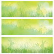 Vector green spring banners, rabbits in grass.