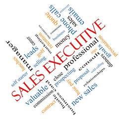 Sales Executive Word Cloud Concept Angled