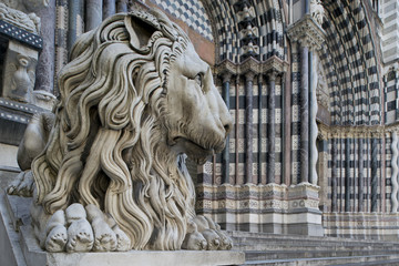 Lion of San Lorenzo, the Cathedral of Genoa