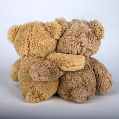 Teddy mit seinem Freund