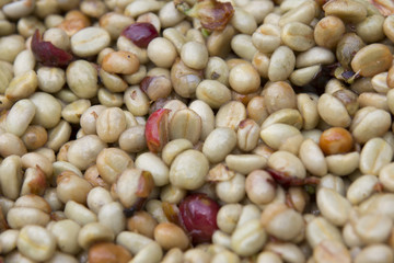 Coffee beans , cherries