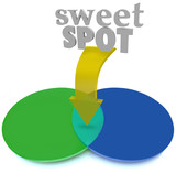 Sweet Spot Overlapping Venn Diagram Area Perfect Ideal