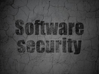 Security concept: Software Security on grunge wall background