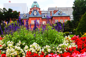 Lavender Flower with Former Hokkaido Government Office in Backgr