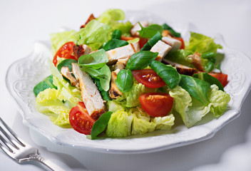 grilled chicken salad with fresh vegetables and basil