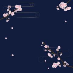 夜桜の背景素材