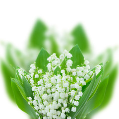lilly of the valley posy close up