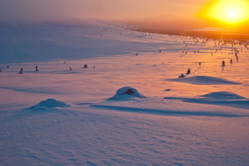sunset in the tundra