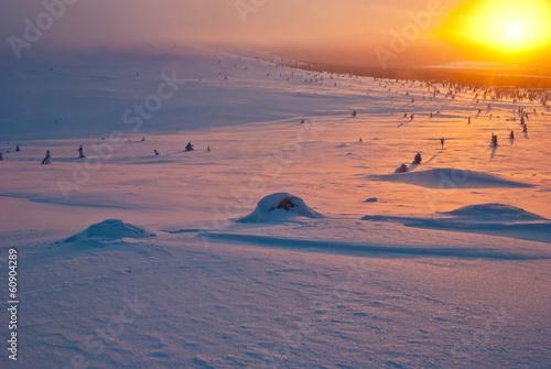 Leinwandbild Motiv sunset in the tundra