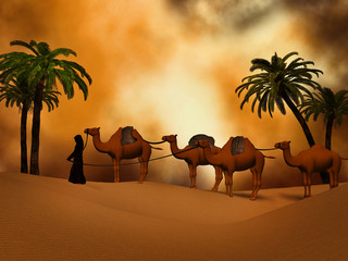 camel caravan   in the desert