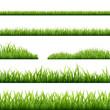 Grass Borders - 60909411