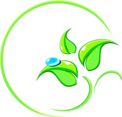 Logo with a picture of green leaves and water drops