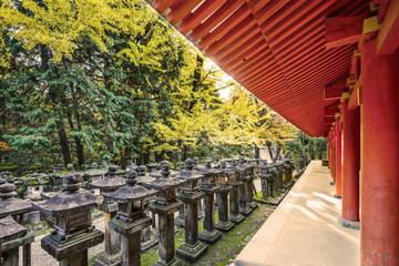 Nara, Japan at Kasuga-taisha
