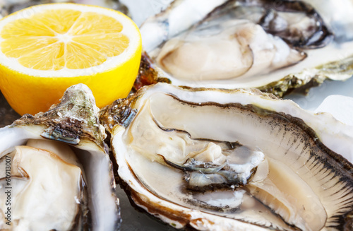 Fresh oysters on ice with lemon close up