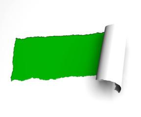 Strappo carta foglio verde arrotolare arricciare