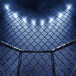 Leinwanddruck Bild - MMA cage and floodlights