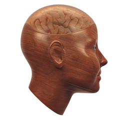 wood head with transparent brain