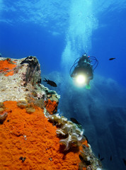 Diver with underwater light by reef