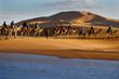 Caravan of tourists passing desert lake on camels - 60928497