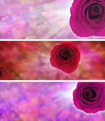 3 x Valentine Rose Website banner heads