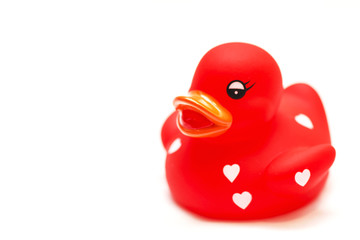 Red Rubber Duck