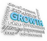Growth 3d Word Background Collage Growing Rising Increase