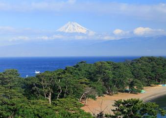 富士山 戸田にて