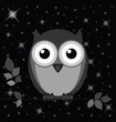 Owl against a starry black night sky