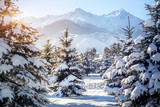 Winter mountain scenery