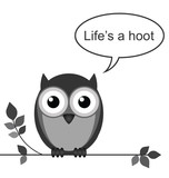 Life is a hoot owl message poster
