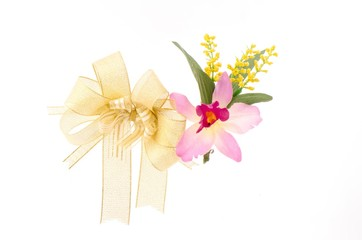 Bow and orchid gift