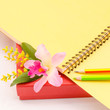 Notebook with pencil and flower orchid