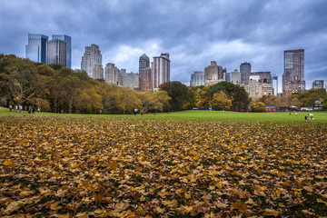 Central Park in the Fall Season in New York City, USA