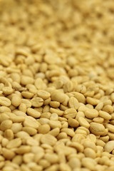 raw coffee bean before roast