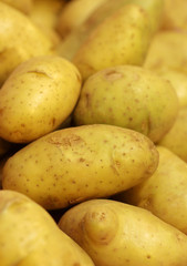 close up fresh potato in market