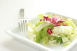 lettuce salad on square dish with copy space