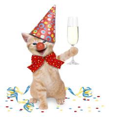 Katze Karneval / Party