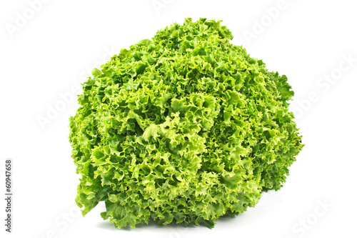 Fresh green lettuce isolated on white