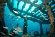 shipwreck, caribbean sea