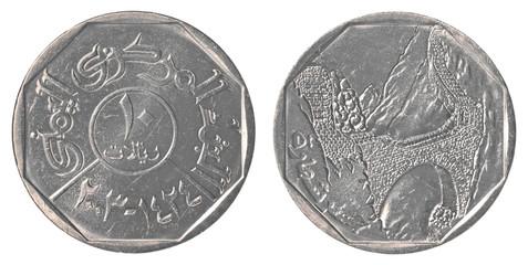 10 Yemeni rial coin