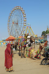 woman camels and ferris wheels at Pushkar camel fair