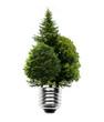 Glühlampe mit Wald