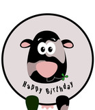 Mucca Happy Birthday