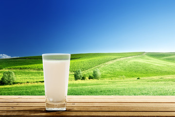 glass of milk and sunny day