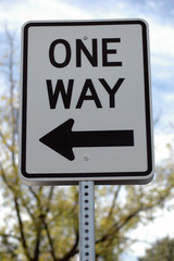 One Way - Left - Large