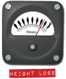 Fat to Fit gauge measure Before After Diet Weight Fitness gain