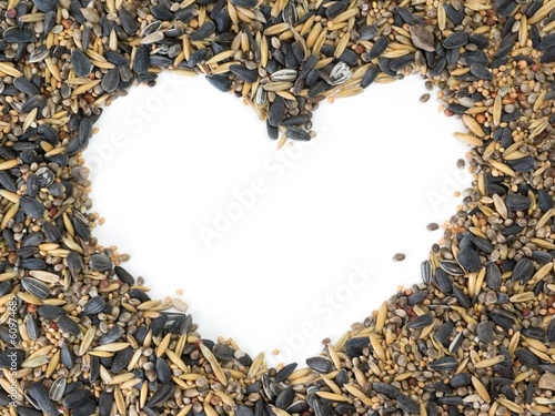 Birdseed around white copy space shaped as a heart