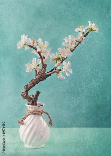 Plexiglas Kersen Spring apple blossoms