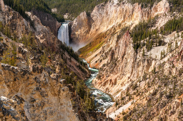 The Lower Falls, Yellowstone.