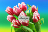Thank you card with pink tulips on colorful background